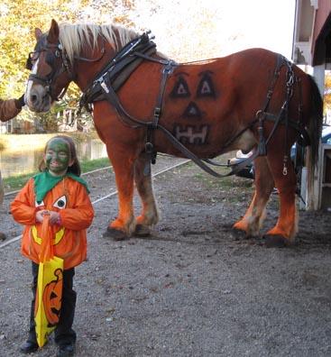 110909_whitewater_pumpkins