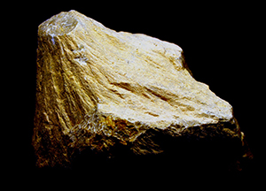 A shattercone from Kentland Quarry.