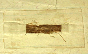 Even the most minute remnants of artifacts related to Abraham Lincoln's assassination have become treasured relics. These few strands, glued to a note card, are ostensibly from the rope used to hang one of the conspirators, David Herold.